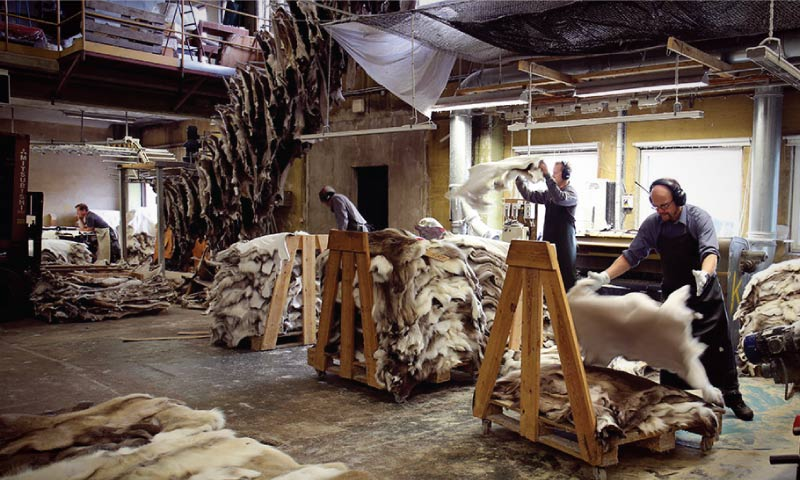 Tannery Management